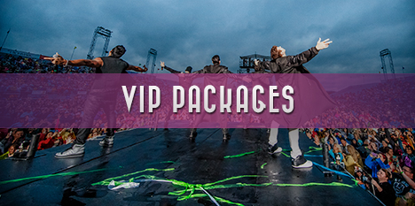 http://mixtapefestival.com/wp-content/uploads/2015/01/mf-main-vip.jpg